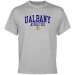 Albany Great Danes Athletics T-Shirt - Ash